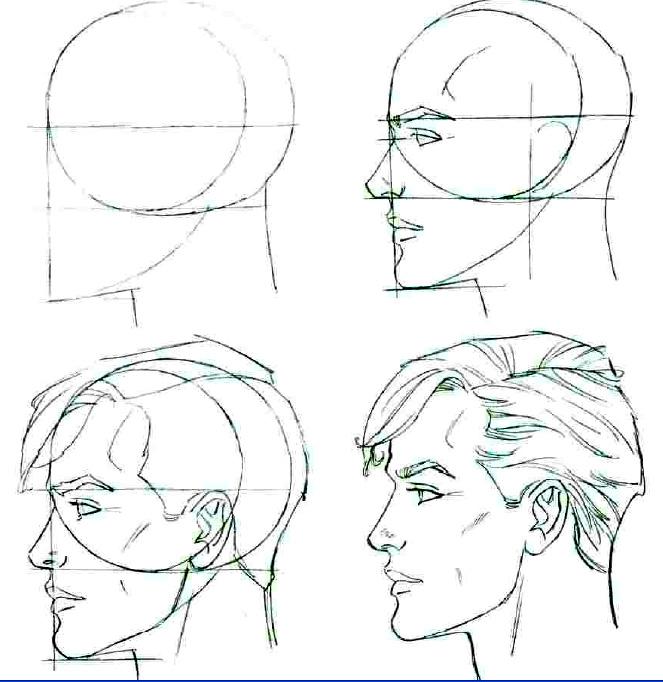 Как правильно рисовать лицо человека поэтапно