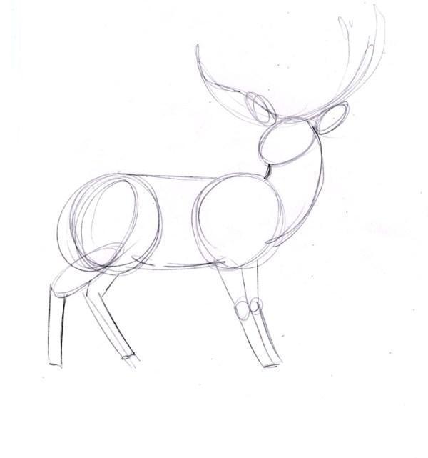 Фото как нарисовать оленя