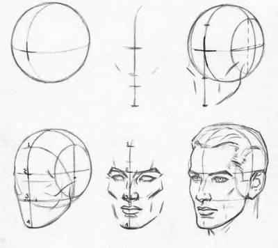 Как нарисовать лицо мужчины поэтапно для начинающих