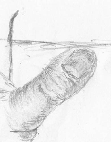 Мужская рука накрашенные ногти 8